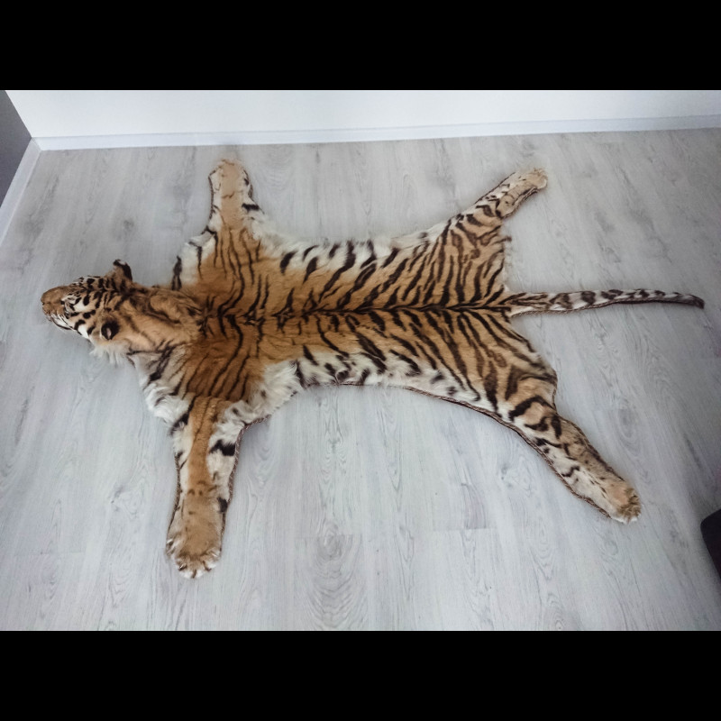 Bengal tiger Rug Taxidermy Mount For Sale