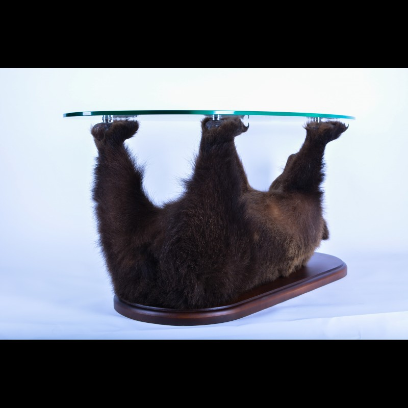 Bear Table  Taxidermy Mount For Sale